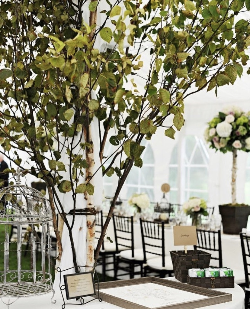 small wedding ideas - use trees and plants