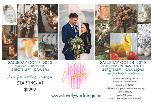 fall pop up weddings at Elsie Perrin Williams Estate and Grosvenor Lodge