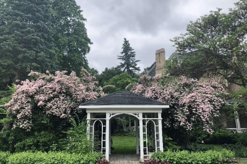 Take a Stroll through Grosvenor Lodge Gardens: Part 1