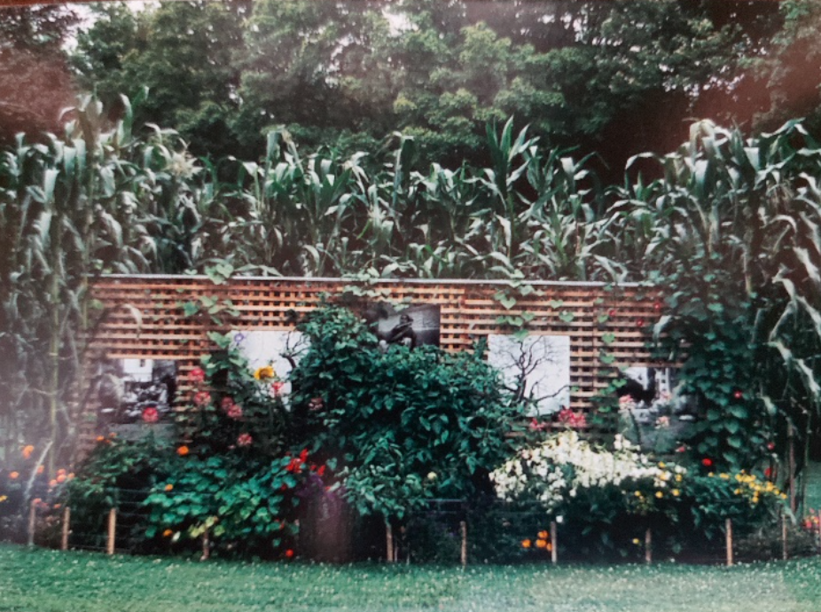 Photo above, date unknown, Ron Benner's 'All That Has Value' garden installation at Grosvenor Lodge.